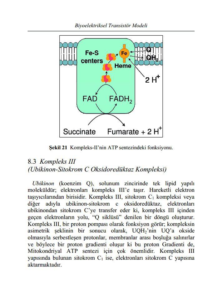 bioelektriksel transistor modeli1